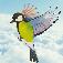 鳥の如く飛ぼう! 3D